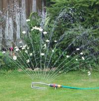 Watering Whilst you're Away