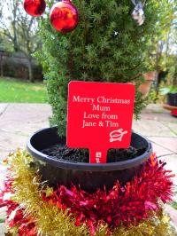 Christmas Gift Idea for Gardeners