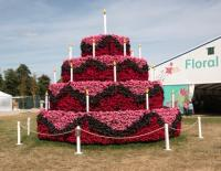 Birthday cake made of flowers to celebrate 25 years of the Hampton Court Palace flower show