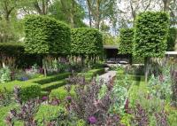 The Husqvarna Garden at the 2016 Chelsea flower show