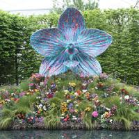 Episode 3: The 2013 Chelsea Flower Show